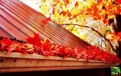 Heeft uw dakgoot last van het herfstweer ?